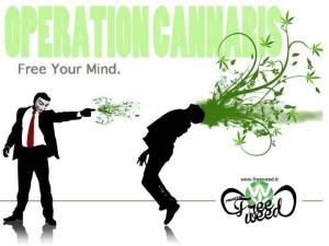 effetti_della_cannabis